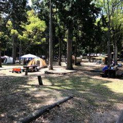 テント:キャンプ